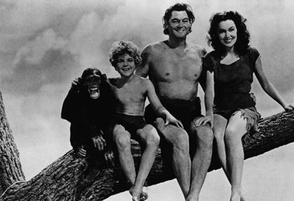 Cheetah, chimp star of Tarzan movies, dies at 80