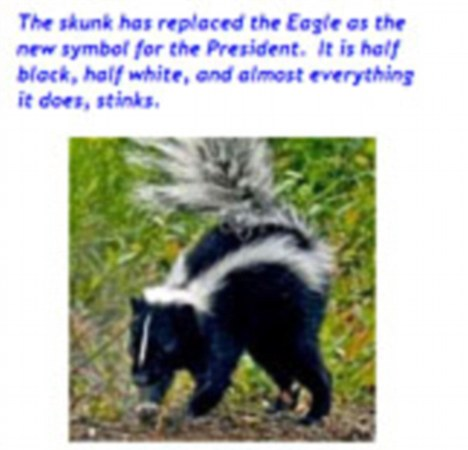 Tea Party Portrays President Obama as a Skunk:  Half-White, Half Black and Stinky