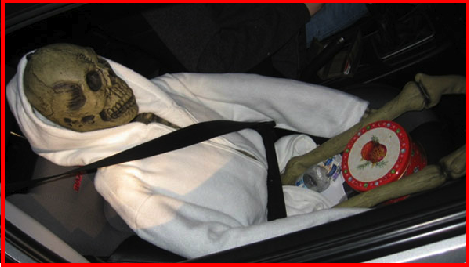 Driver Puts Skeleton In The Passenger Seat To Drive In The Carpool Lane