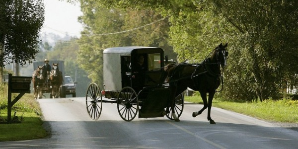 Amish Group Facing Charges, Drunk While Driving A Horse And Buggy!?!