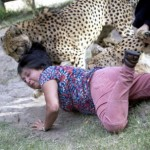 caters_woman_mauled_by_cheetahs_02