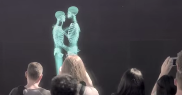 Skeletons hug, kiss, dance behind a screen – what comes out may surprise you